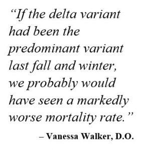 Vanessa quote